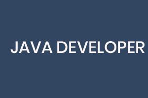 JAVA Developer Sign